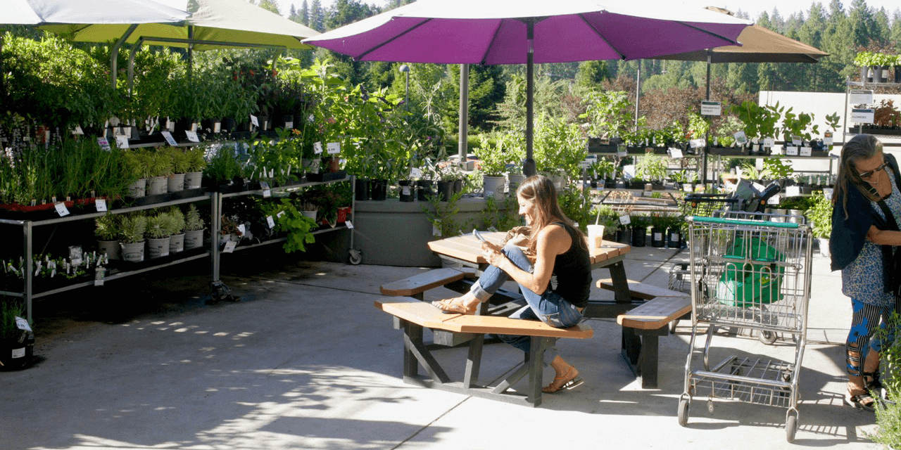 Racks of plants for sale create lush outdoor area where a young woman reads at an umbrella-covered picnic table and another woman browses the plant selection.